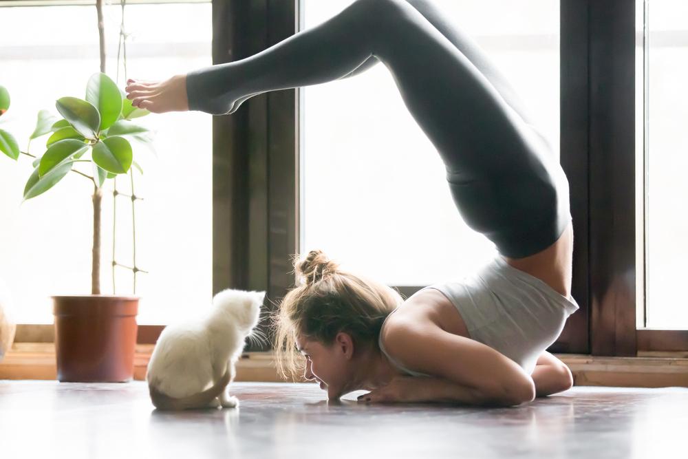 Manfaat Yoga Bagi Kesehatan fisik dan emosional